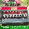 蔬菜精量播种机 农机厂家供应